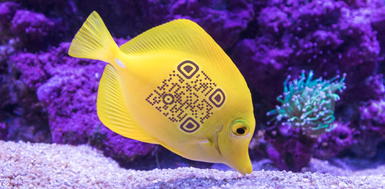 QrcodeLab online qr code generator - qr code image editor - sea theme qr code with yellow sea fish near coral